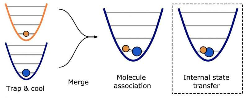 The diagram above shows part of the molecular assembly process from individually captured atoms to the earth state molecule using optical tweezers (lasers). Photo: Ni Group