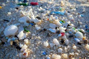Microplastic sizes found in Hudson-Raritan estuary and coastal ocean