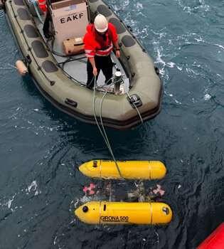 Submerged robots have extraordinary adaptability and speed of activity. Credit: Universitat Politècnica de Catalunya