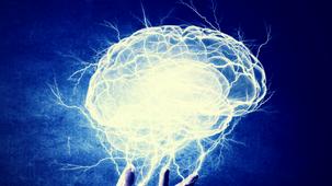 Daniel Graham: Your brain is not a computer
