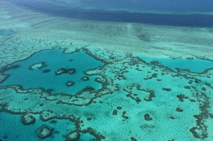 Intervention 'could buy 20 years' to lower Great Barrier Reef