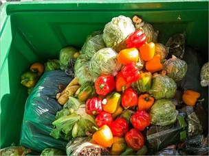 Shop AI will reduce the number of food waste by 80%
