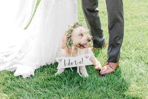 Outdoor Wedding Venue NJ with dog.