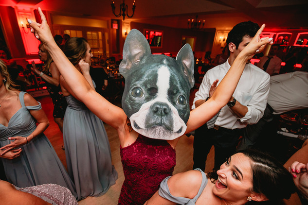 Incorporate Dog in your Wedding