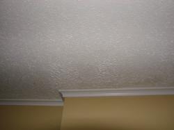 Popcorn Ceiling