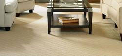 Install Cream Carpet
