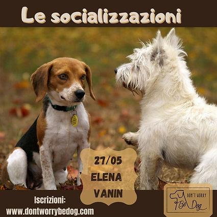 Le socializzazioni