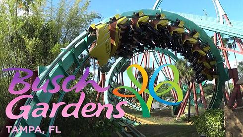 Busch Gardens Tampa Bay Florida
