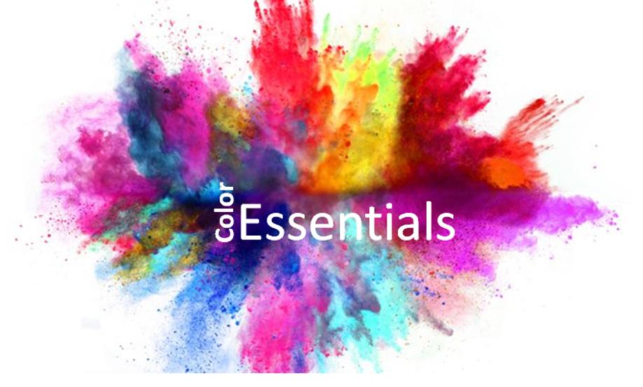 Color Essentials.png