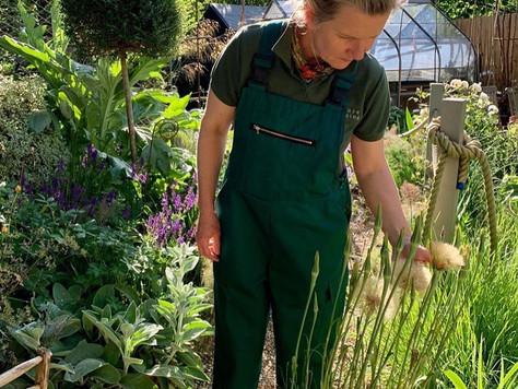 Gardening in green.