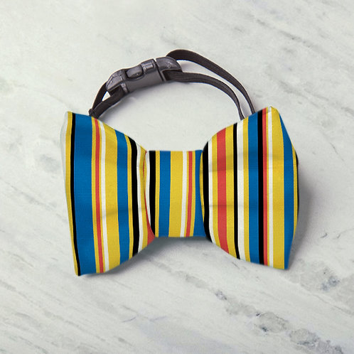 Laço/Gravata Stripes Premium