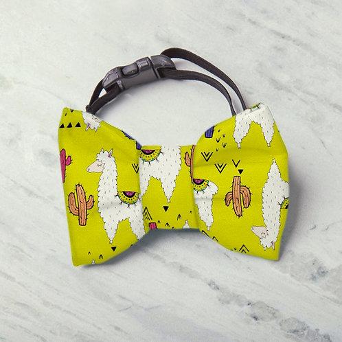 Laço/Gravata Lhamastê Premium
