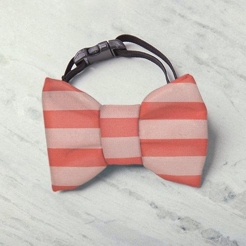 Laço/Gravata Listras Premium