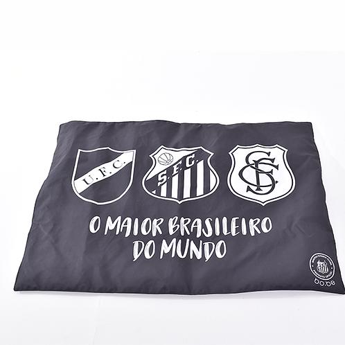 Esteira Santos O Maior Brasileiro Do Mundo