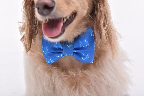 Laço/Gravata Cruzeiro Raposa Azul
