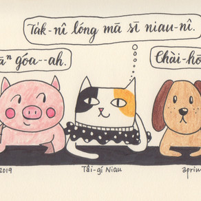 The Year of Cat