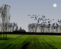 #26 November Landscape