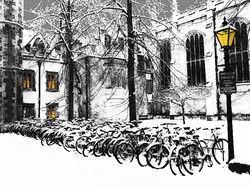 #14 Cycles in the Snow