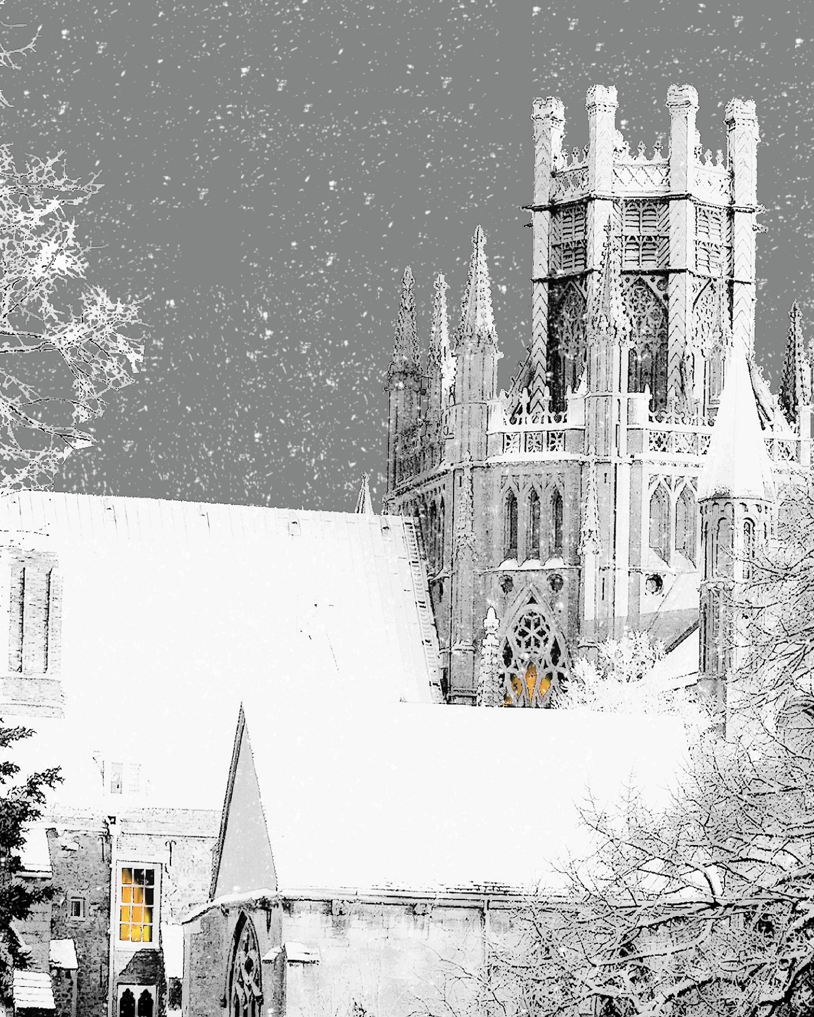 #12 Ely Octagon in Snow