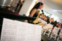 música para casamento civil, animação casamento civil, cerimónia civil, música na recepção, musica na receçao, musica aperitivos, musica na cerimonia civil e receção, musica classica gospel jazz fado