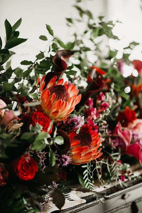 Protea flower arrangement