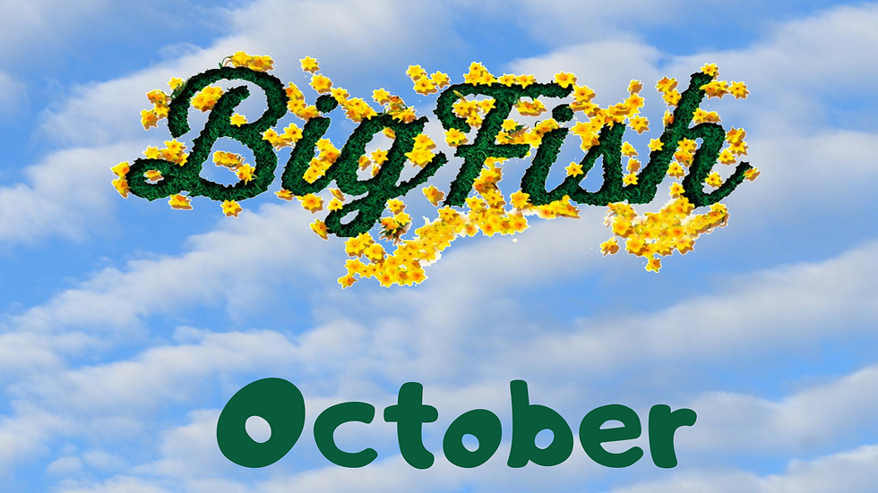 Big Fish Saturday, Oct 17 Student Ticket