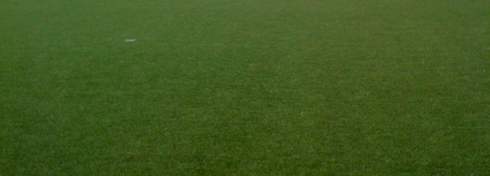 artificial grass MUGA 10.JPG