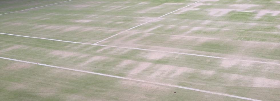 artificial grass Sand Filled 2.JPG
