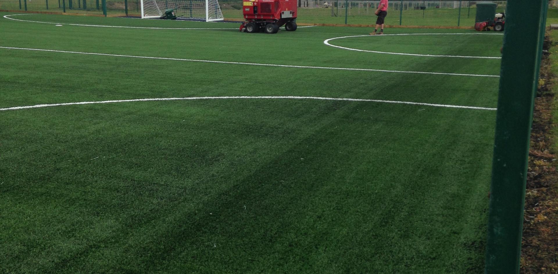 3G artificial grass 33.JPG