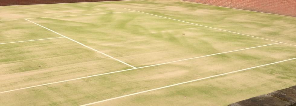 artificial grass Sand Filled 7.JPG