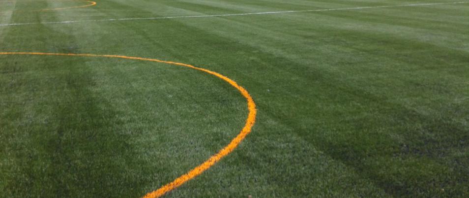 3G artificial grass 24.JPG