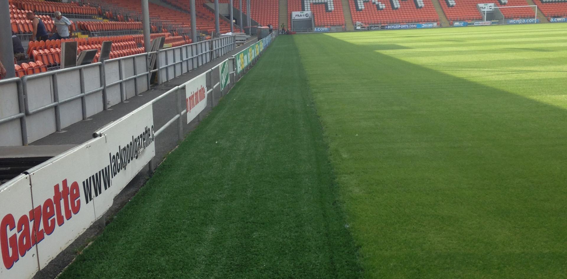 3G artificial grass 25.JPG