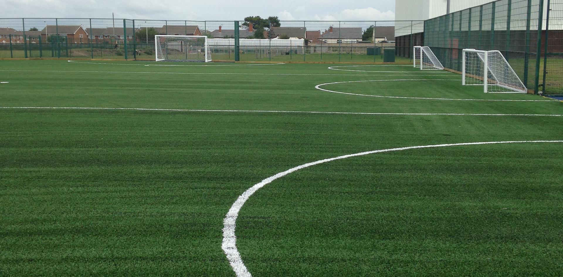 3G artificial grass 08.JPG