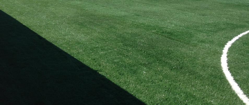 3G artificial grass 11.JPG