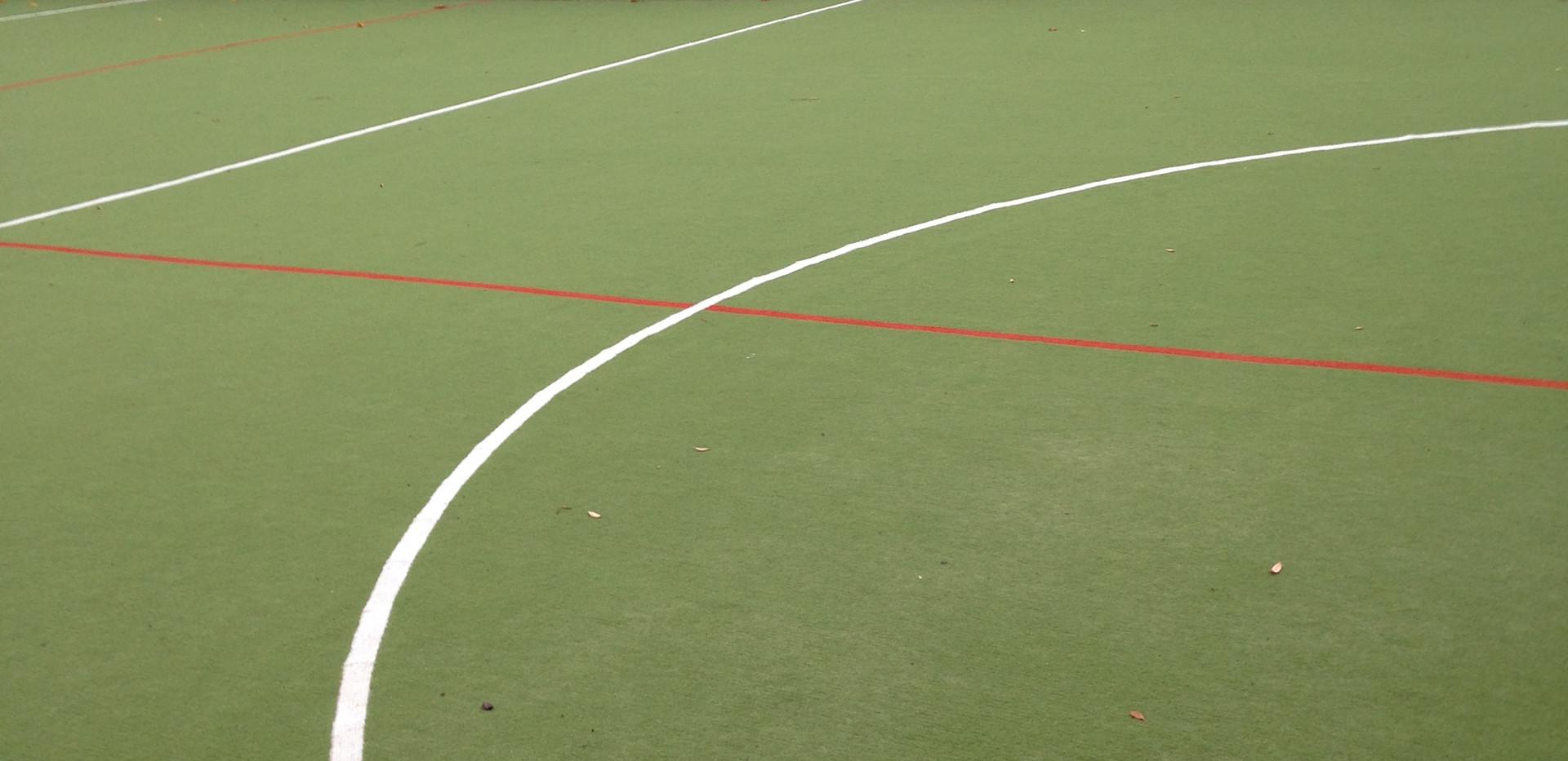 Needle punch artificial grass 35.JPG