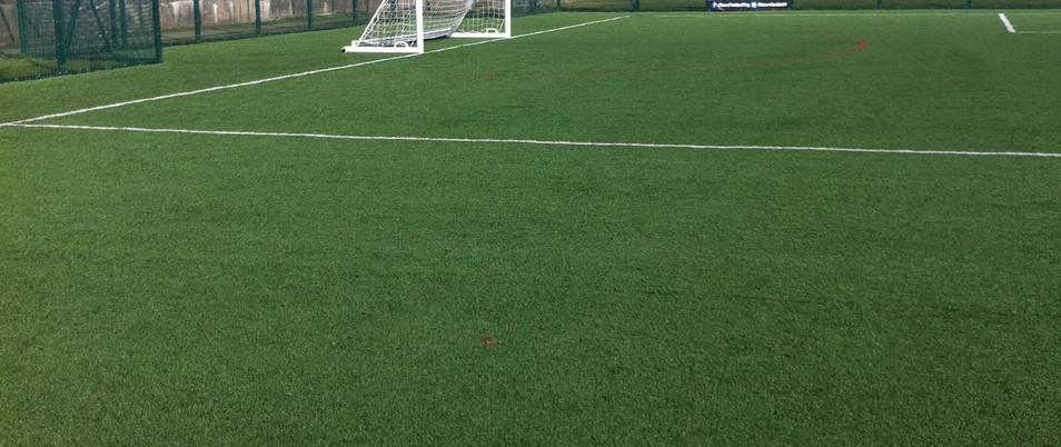 3G artificial grass 23.JPG