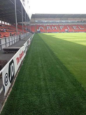 artificial grass 0752.jpg