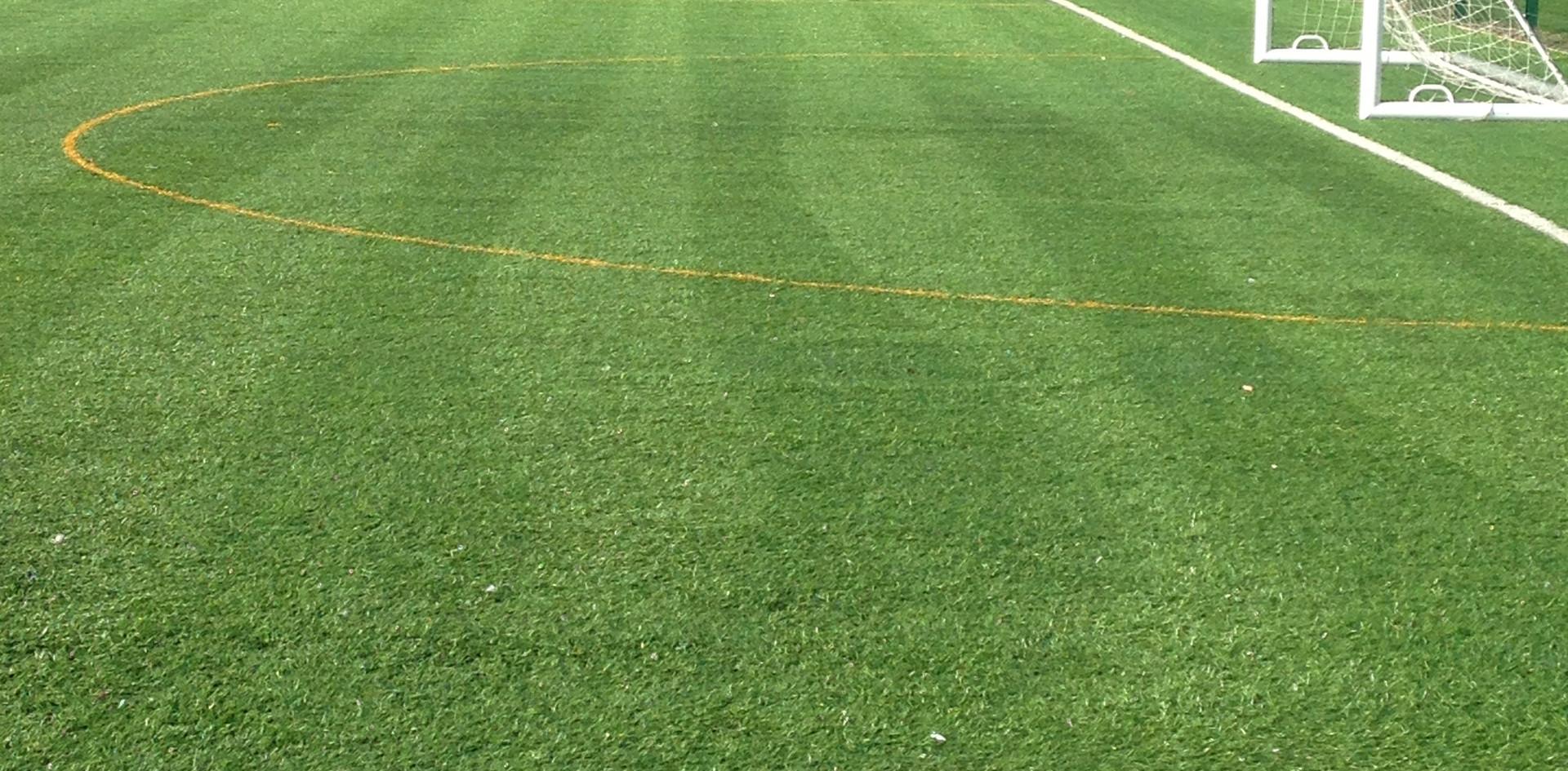 3G artificial grass 19.JPG