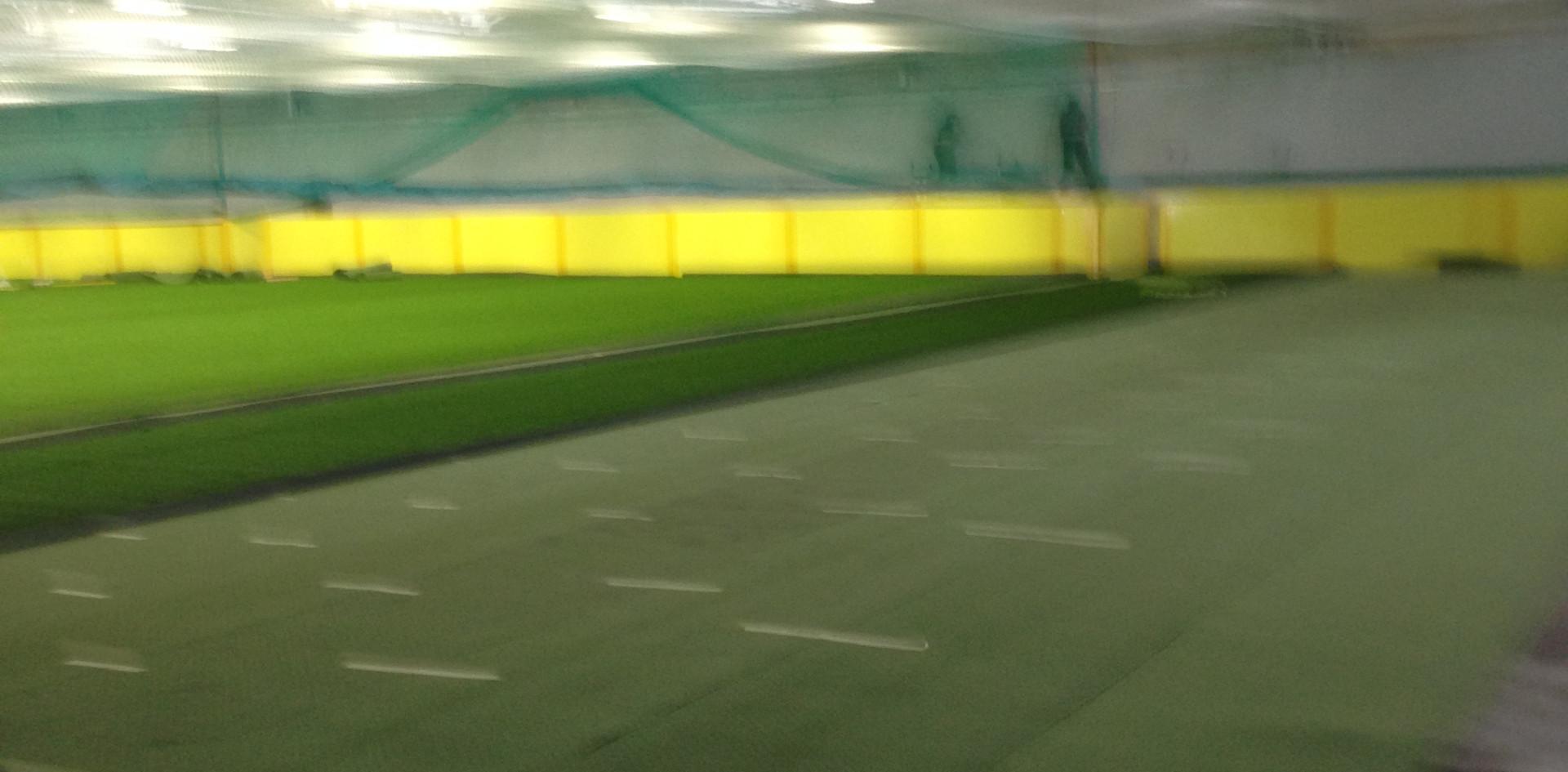 3G artificial grass 28.JPG