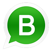 whatsappbusiness1.png