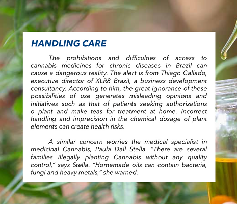 Medica Cannabis on Brasil.png
