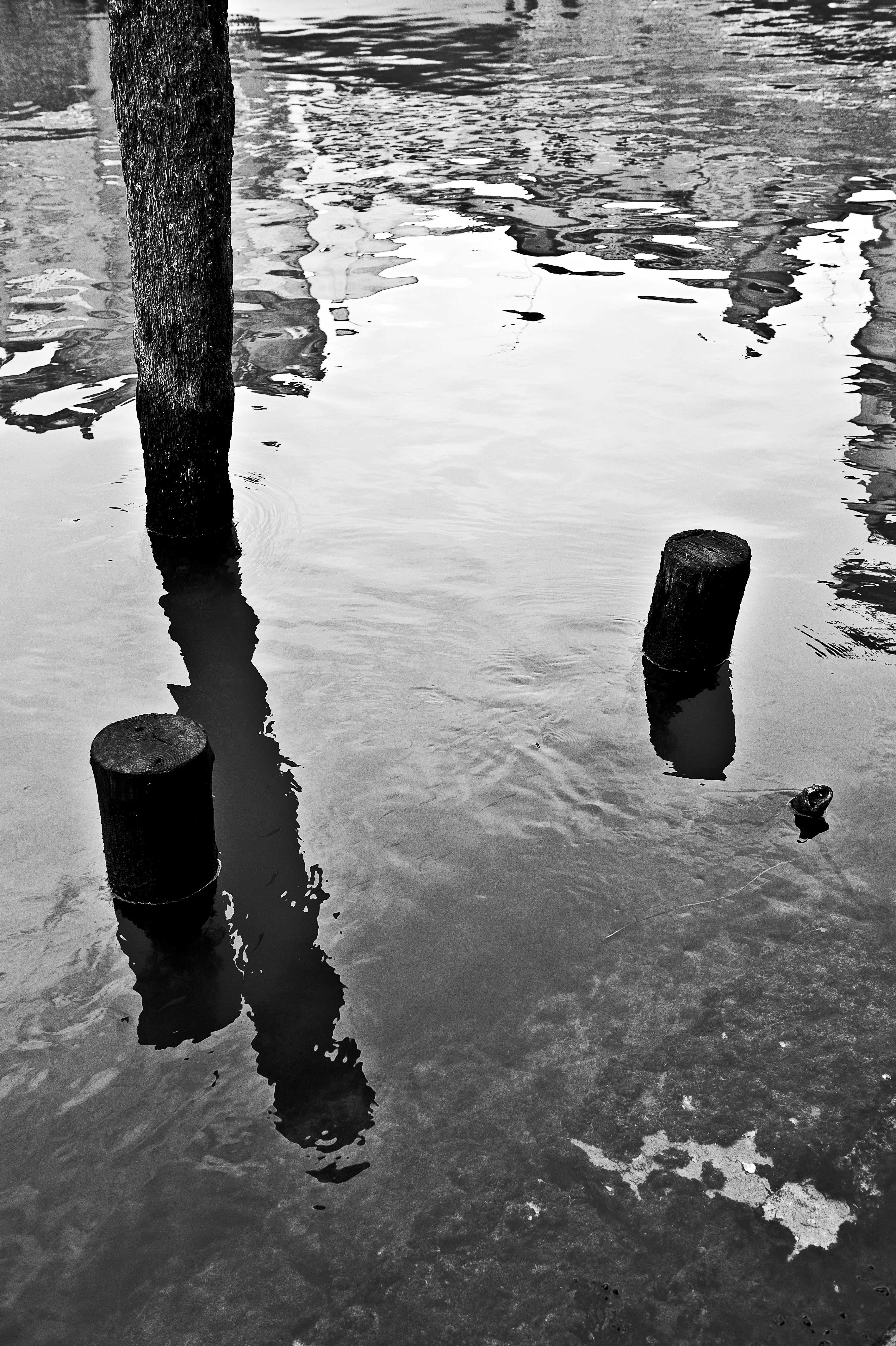 mirror water_VI
