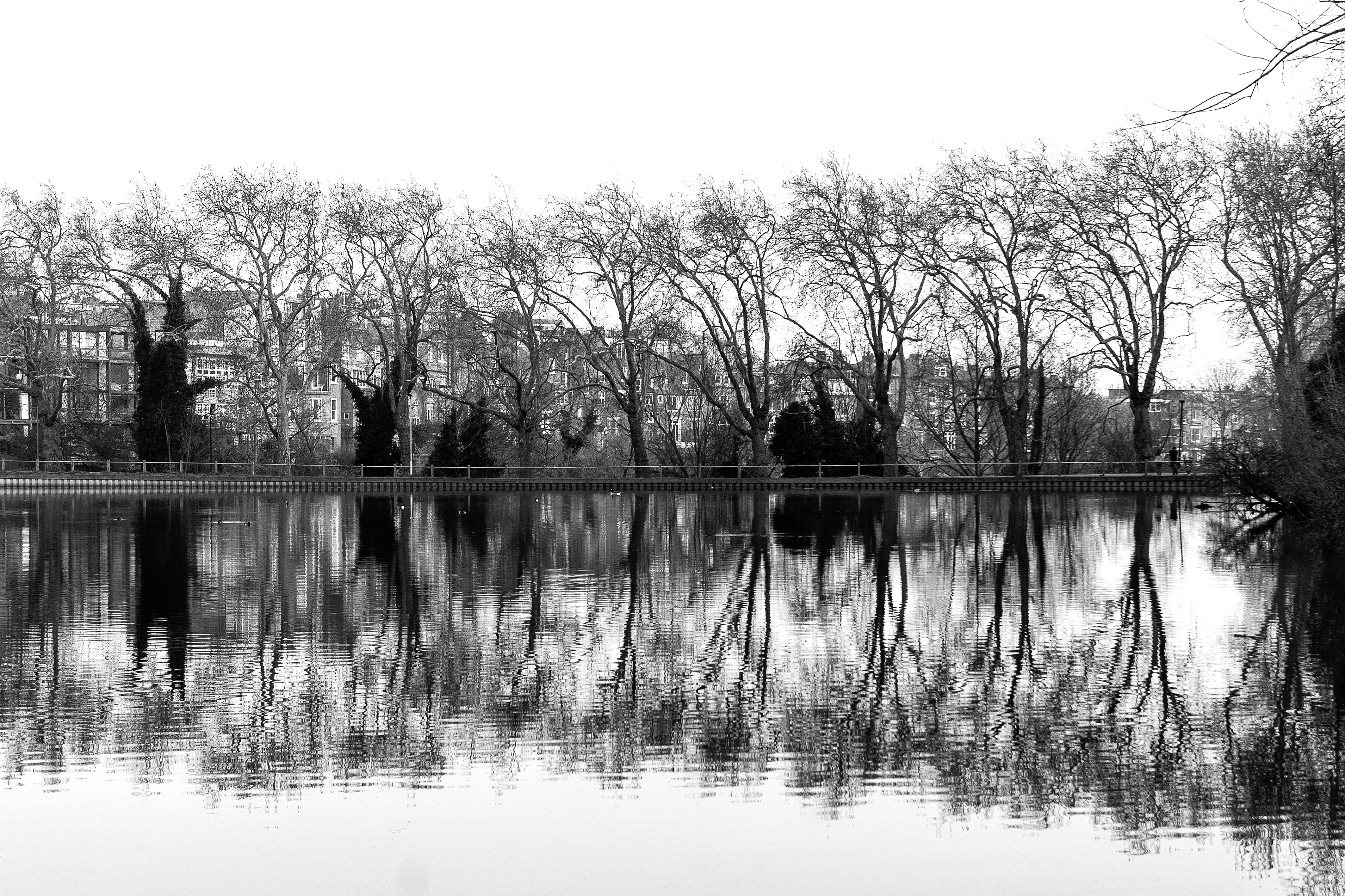 mirror water_VIII