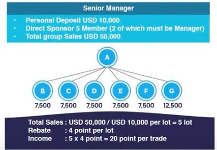 SamtradeFX - Programme Affiliation Senior  Manager.png