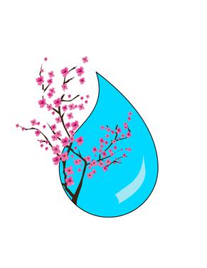 Sakuras in Tear.png