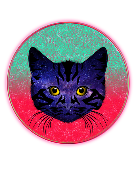 Space Cat.png