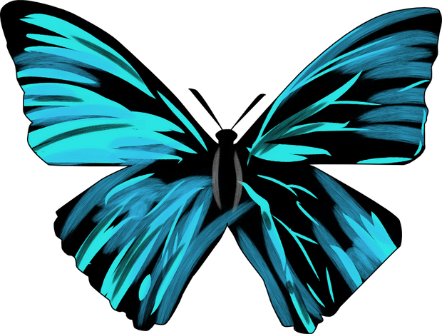 Butterfly Trans.png