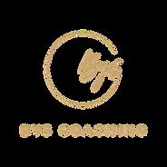 logo_bys1-transparent_edited.png