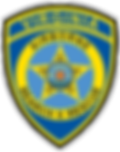 Virginia Airborne Search & Rescue Logo