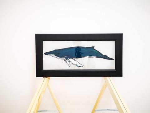 Une baleine sur verre